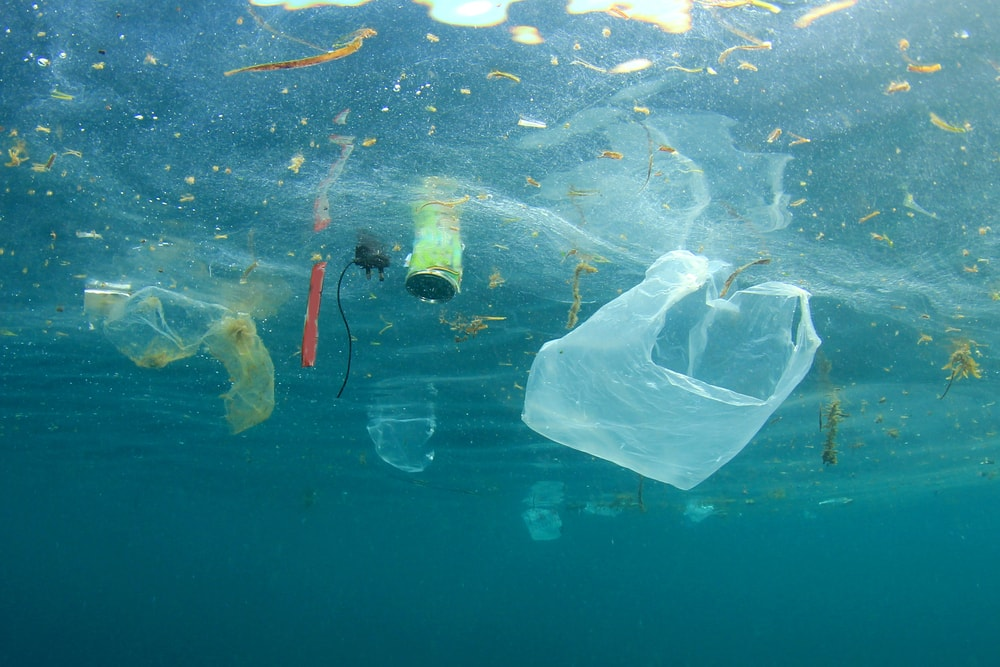 Plastic Waste Pollution